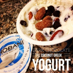 Dark Chocolate Coconut Greek Yogurt